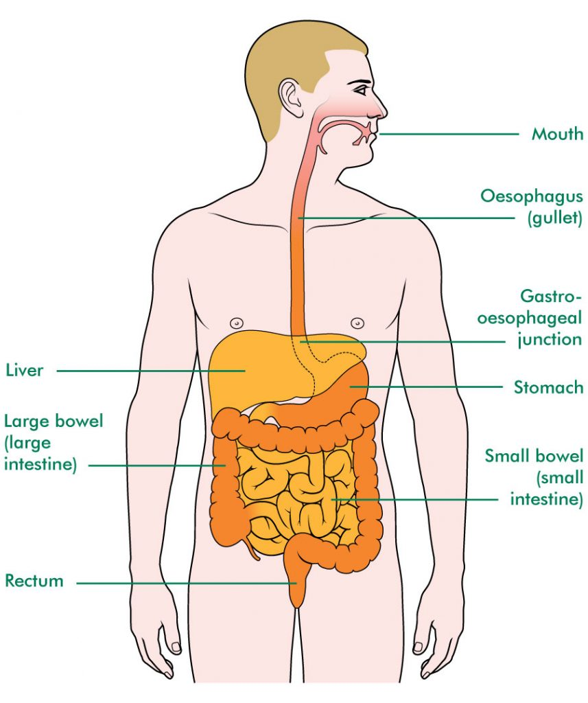 Oesophageal Surgery Melbourne